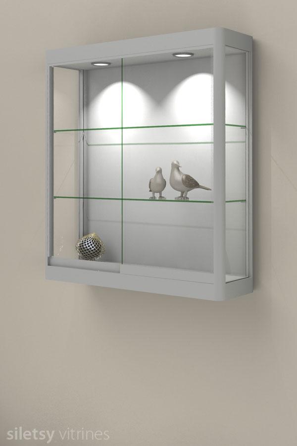 Glazen Wand Vitrinekast.Hangvitrines