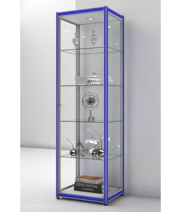 Vitrinekast FX-06 60x49x200cm